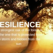 Resilience Blog